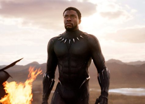 The 'Black Panther' following; a twist on classic superhero movies