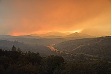 Forest fires and the environment
