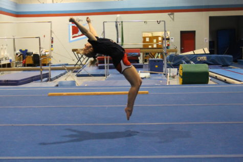 Gymnastics is back and ready for business