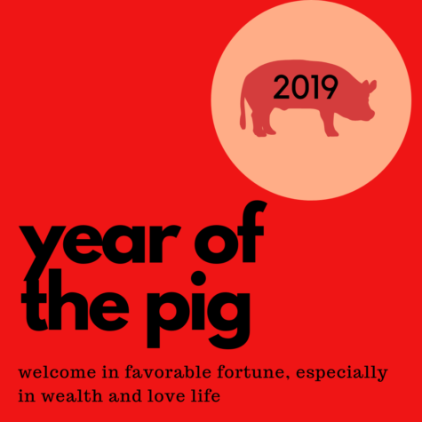 Welcome to the Year of the Pig