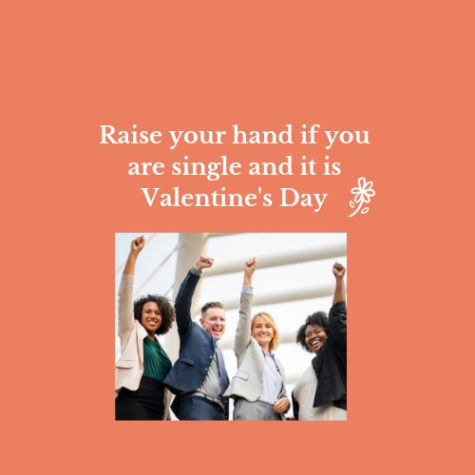 How to survive Valentine's Day alone, yet again