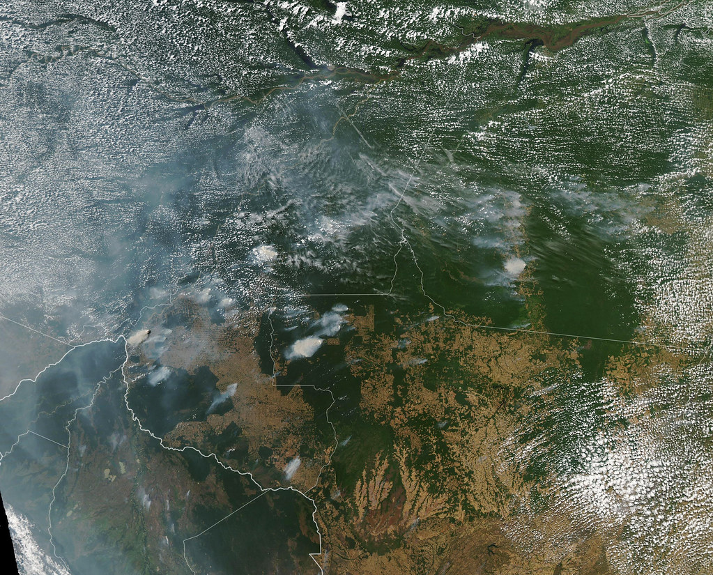 The Amazon rainforest fires are so harsh that they can be see from Space by NASA.