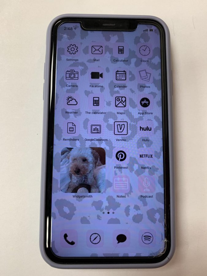 IOS 14 update gave this iPhone a different look, that iPhone users are not used to.