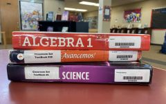 Many classes that freshmen take include a physical science, Spanish I and algebra I.