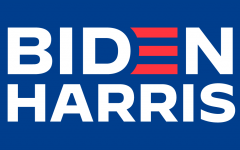Joe Biden, former Vice President under Barack Obama, was elected to the presidency, defeating one-term incumbent Donald Trump.