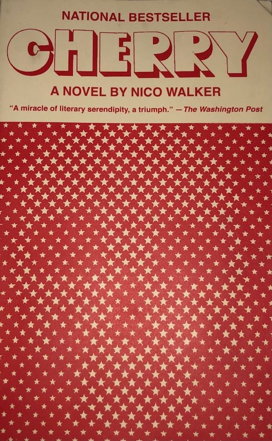 Nico+Walker%27s+harrowing+novel+describes+the+opioid+epidemic+and+the+downfall+of+a+young+war+veteran.+